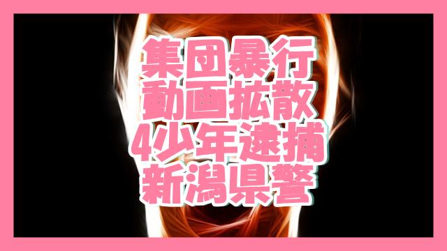 サムネ190306集団暴行動画拡散4少年逮捕新潟県警