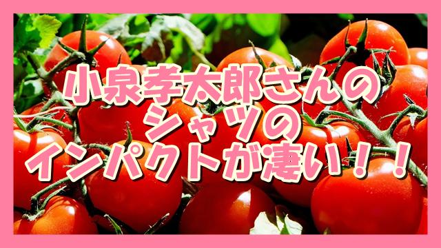 サムネ190808小泉孝太郎さんのシャツのインパクトが凄い!!
