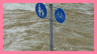 サムネ191013信濃川津南町氾濫