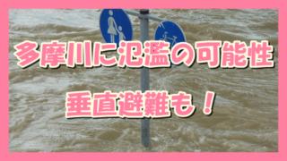 サムネ191013-1012多摩川氾濫可能性