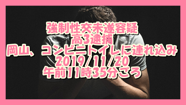 サムネ191120岡山強制性交未遂高校生逮捕
