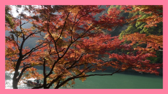 サムネ191202嵐山の紅葉
